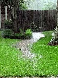 Water Drainage Problems In Backyard Vicki U0027s Home Photos Gardening Pathway