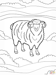angry ram coloring page download animal free printable