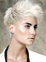 lowlights on white hair 80 unique hair color ideas to try