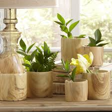 house plants functional and pretty planters sandra best decor
