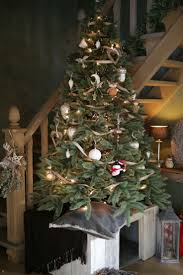 265 best oh come all ye faithful images on pinterest christmas