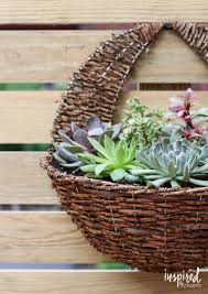 diy succulent wall planter inspired by charm