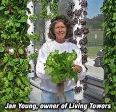 living towers localharvest