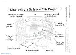 science fair report template science report template ks2 awesome science fair templates
