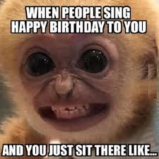 Happy Birthday Funny Memes - happy birthday to you funny pictures quotes memes funny images