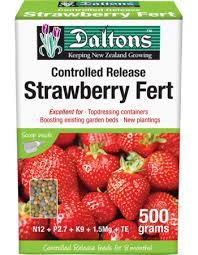 Strawberry Garden Beds Daltons Strawberry Mix Daltons