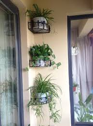 Wall Mounted Flower Pot Holder Plant Stand Fascinating Corner Plant Pot Photos Inspirations