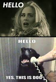 Adele Memes - 28 adele hello meme pictures because you really didn t hear that