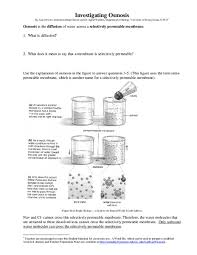 investigating osmosis 7th higher ed worksheet lesson planet