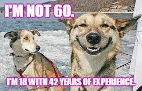 Cute Birthday Meme - not old classic 60th birthday wishes