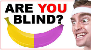 Test To See If You Are Color Blind Are You Color Blind The Quick Brain Test With Answers Youtube