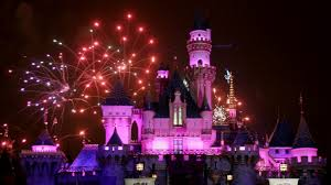 how much is it to go to the zoo lights how much does it cost to go disneyland