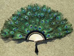 large peacock feather fan 20 by 36 inches made to order