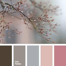 color palette 2979 color palette ideas color palettes colors