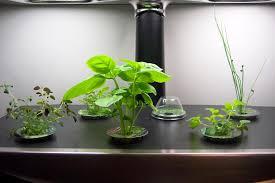 Indoor Herb Garden Kit Indoor Garden Kit With Light Gardening Ideas