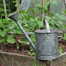 vintage watering can old galvanised zinc metal watering cans