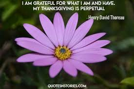henry david thoreau quotes quotesnstories