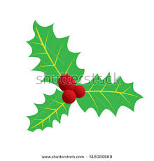 holly christmas holly berry holly berry stock vector 704482501