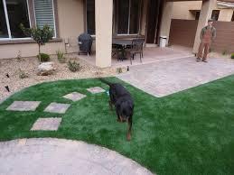 dog runs coastal greenscapes