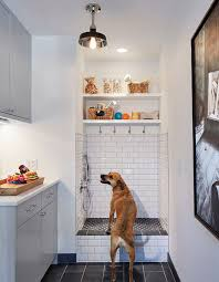 Dog Shower Laundry room mudroom with dog shower This lucky dog