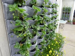 planters that hang on the wall garden hanging planters outdoor stupendous hanging wall planters