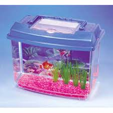 penn plax water world goldfish tank kit hayneedle