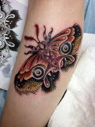 moth by tantrix