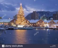 christmas tree warehouse christmas lights decoration