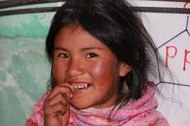 Madeline Leidy Heifer 12 X 12 Peru