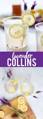 lavender cocktail meer dan 100 lavender cocktail op pinterest cocktailrecepten