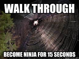 Meme Ninja - walk through become ninja for 15 seconds scumbag spiderweb