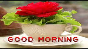 morning wishes sms greetings whatsapp message
