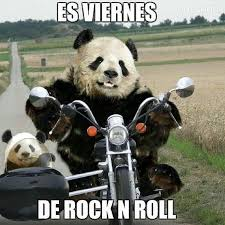 Memes De Pandas - es viernes de rock roll memesmexicanos richis pinterest