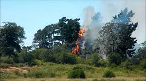 Wildfire Bc July 2015 by Fire On Panama Flats Victoria Bc June 29 2015 Youtube