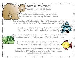 animals eat move and have covering first grade wow bloglovin u0027