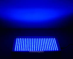 16w 230pcs blue led grow light panel 100v 240v 50 60hz ac adaptor