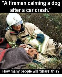 Car Wreck Meme - 25 best memes about car crashing car crashing memes