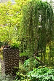 garden design garden design with small trees for landscaping