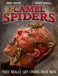 Arañas del desierto (Camel Spiders)