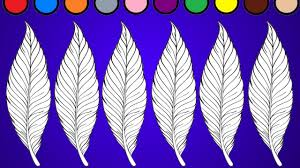 feather coloring page coloring for kids youtube