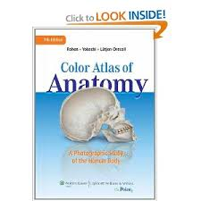 Anatomy Of Human Body Pdf Color Atlas Of Anatomy A Photographic Study Of The Human Body