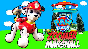 pup paw patrol zoomer marshall giocattolo bambini interactive