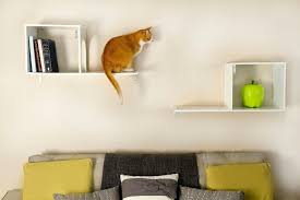 stylish dog and cat beds other items for your pets newsday