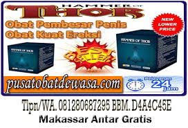 jual hammer of thor di solo 081280687295 antar gratis jual vimax