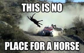 Soon Horse Meme - cool soon horse meme 80 skiparty wallpaper