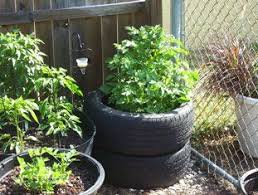 Potato Planter Box by Grow Potatoes In Tires 4 Steps