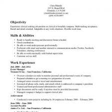 Travel Resume Examples by Tourism Resume Sample Travel Resume Template Resume Templat