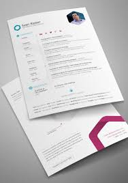 infographic resume infographic resume free best free