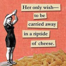 Cheese Meme - 15 cheese memes that honor the beauty of national cheese day
