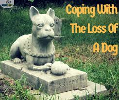 coping with loss of pet coping with the loss of a dog dogizone